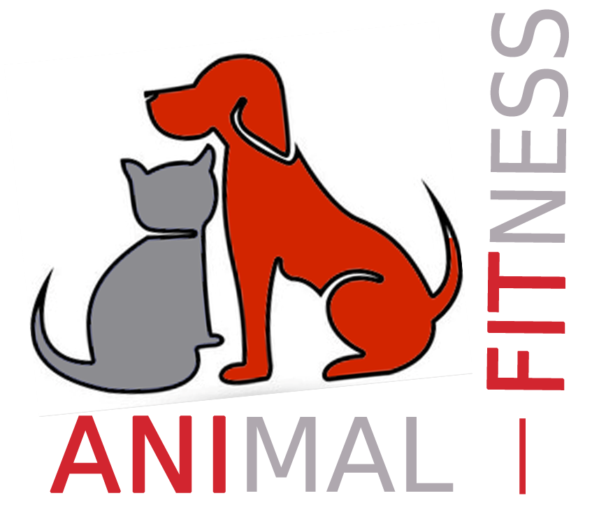 MEER OVER ANIMAL FITNESS